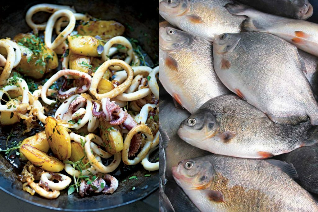 There is something fishy about Buenos Aires…