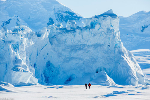 Antarctica | Adventure Begins Where the World Ends