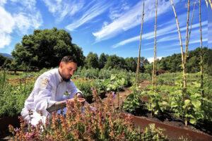 Hotel Vira Vira, Chile - Vegetable Garden