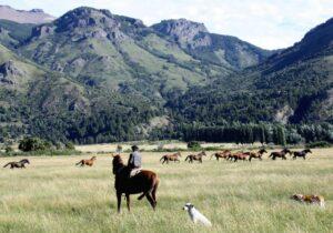 riding safari patagonia