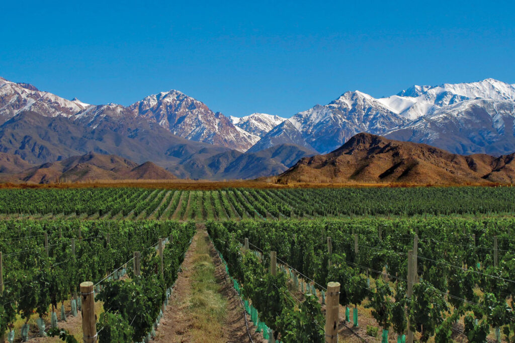 Casa de Uco, Mendoza, Argentina- Vineyards and Mountains