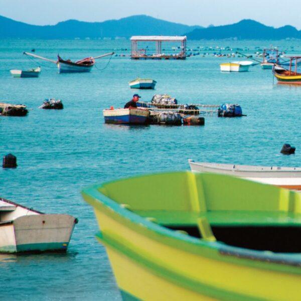 Buzios, Costa Verde and Florianópolis