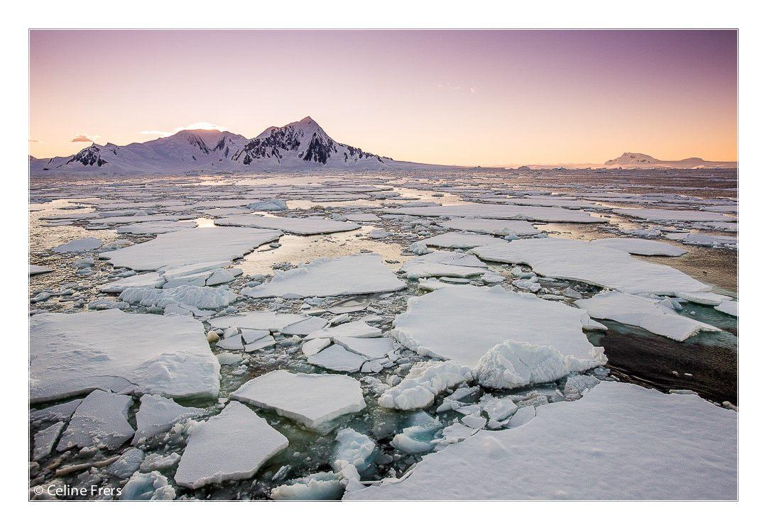 Celine Frers Antarctica Icebergs