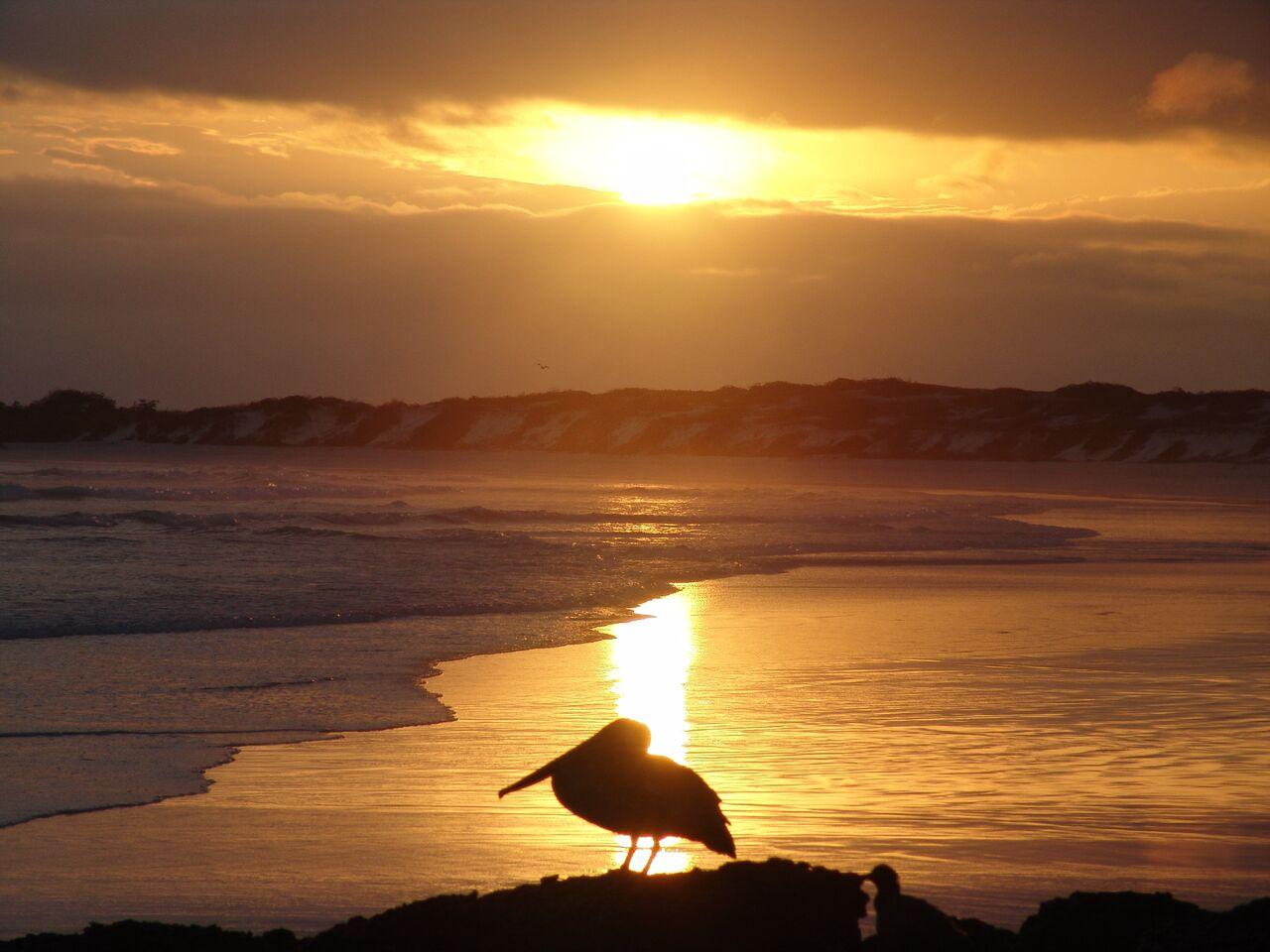 Pikaia Lodge Galapagos - Sunset view