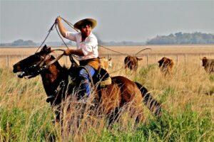 Rincon del Socorro, Argentina - Celine Frers Photography