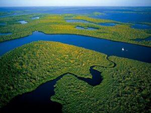Amazonas Brazil