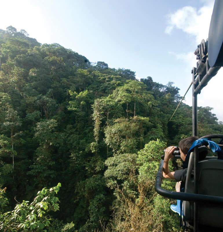 South America, A Condor's View
