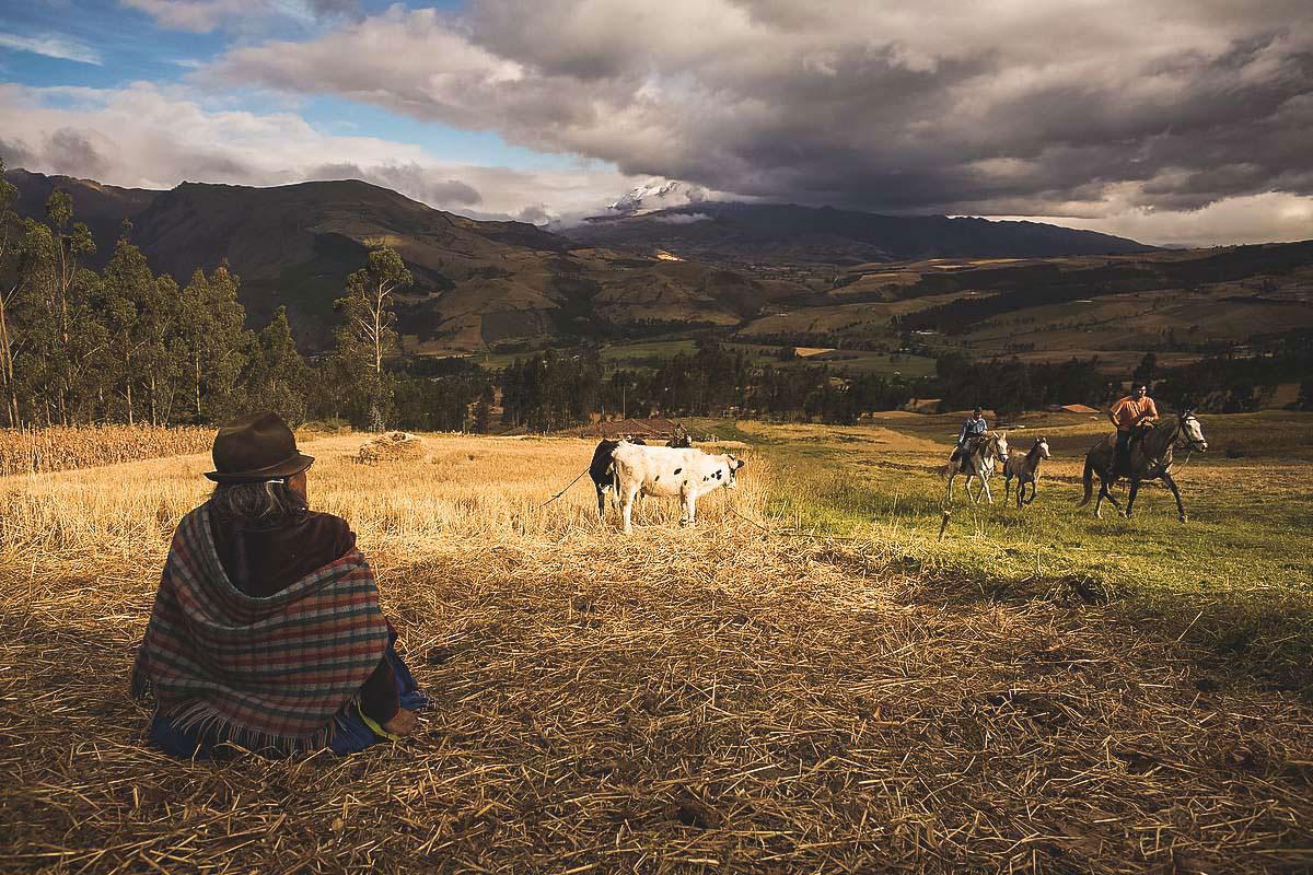 Ecuador Highlands Herdsman Andes | Plan South America