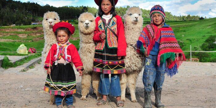 Peruvian Children & Alpacas