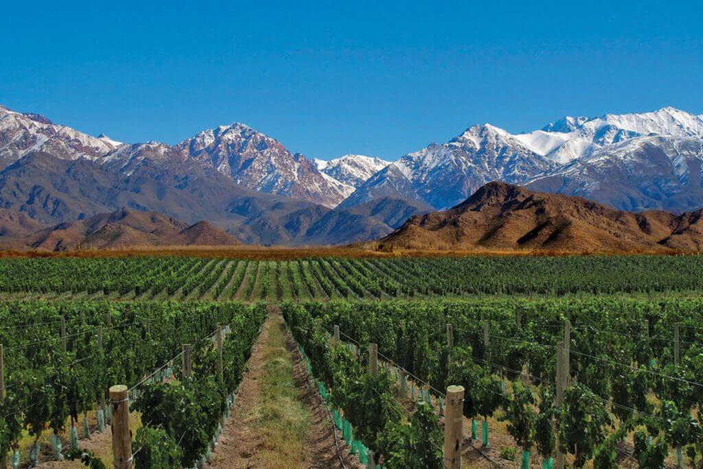 wine region mendoza argentina