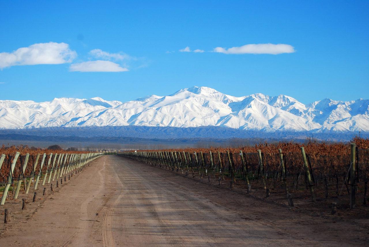 Mendoza Wine Harvest Festival – La Vendimia
