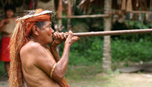 Amazon Peru Yahua Blowgun