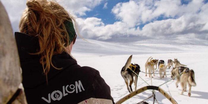Husky Sledding Argentina
