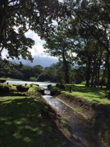 Hacienda Montezuma, Costa Rica - River View