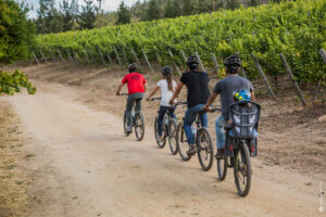 Family Bike Riding at Matetic, Chile