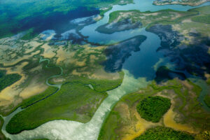 Belcampo, Belize - Aerial View
