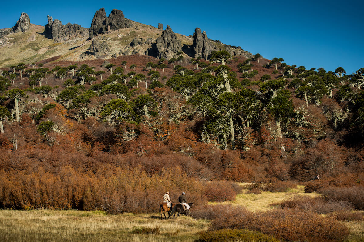 Property Pick | Estancia Caballadas, Patagonia, Argentina