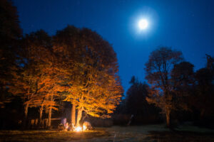 Caballadas Argentina Moonlight