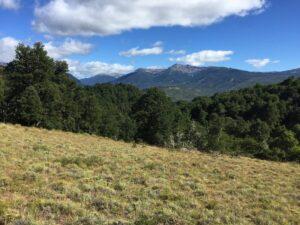 Caballadas, Argentina - Mountain Scenery