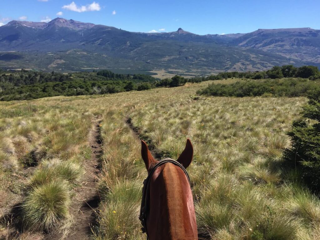 Estancia Caballadas | Private Paradise in Patagonia