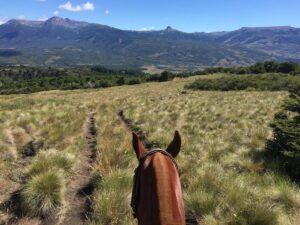 Riding Scenery Caballadas Argentina