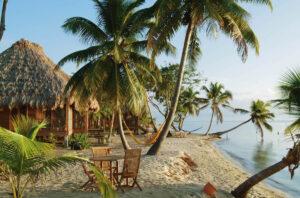 Turtle Inn, Placencia, Belize - Beach palms