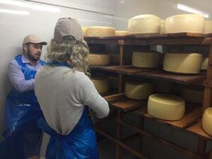 Venetia Vira Vira Cheese Factory Tour