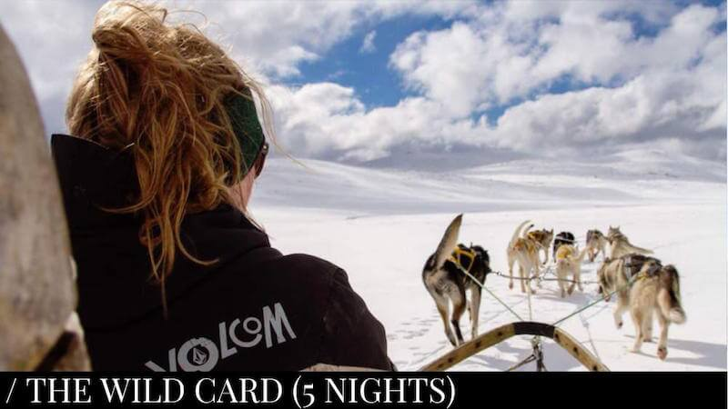 Horses & Huskies (5 nights)