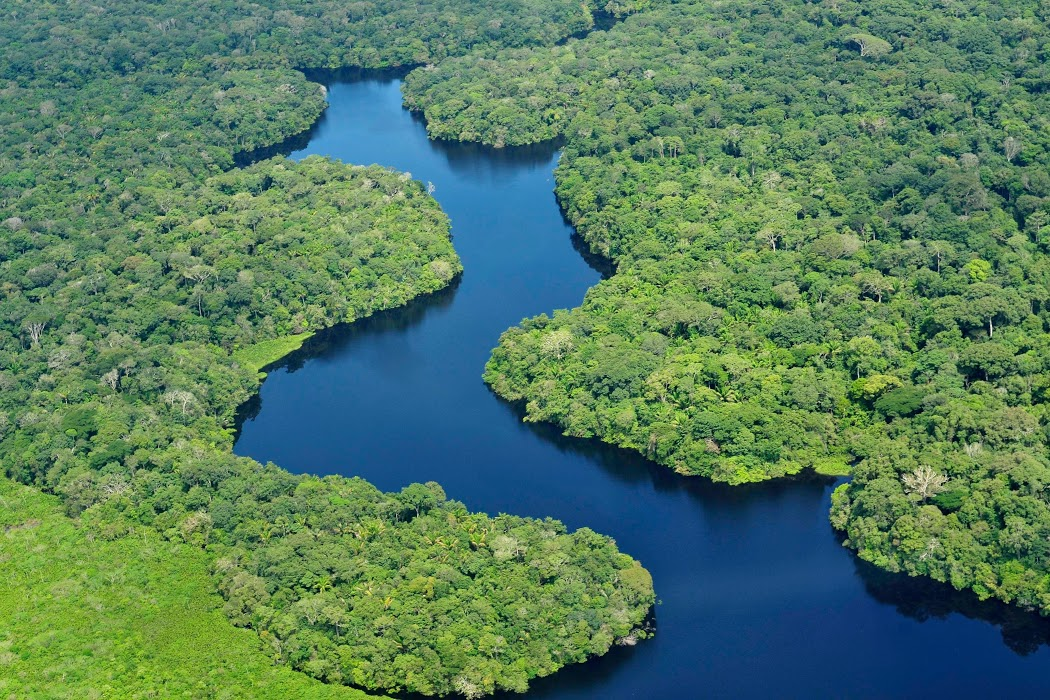 The Brazilian Amazon | An Experiential Journey