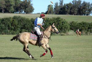 Estancia El Boqueron Argentina - Polo
