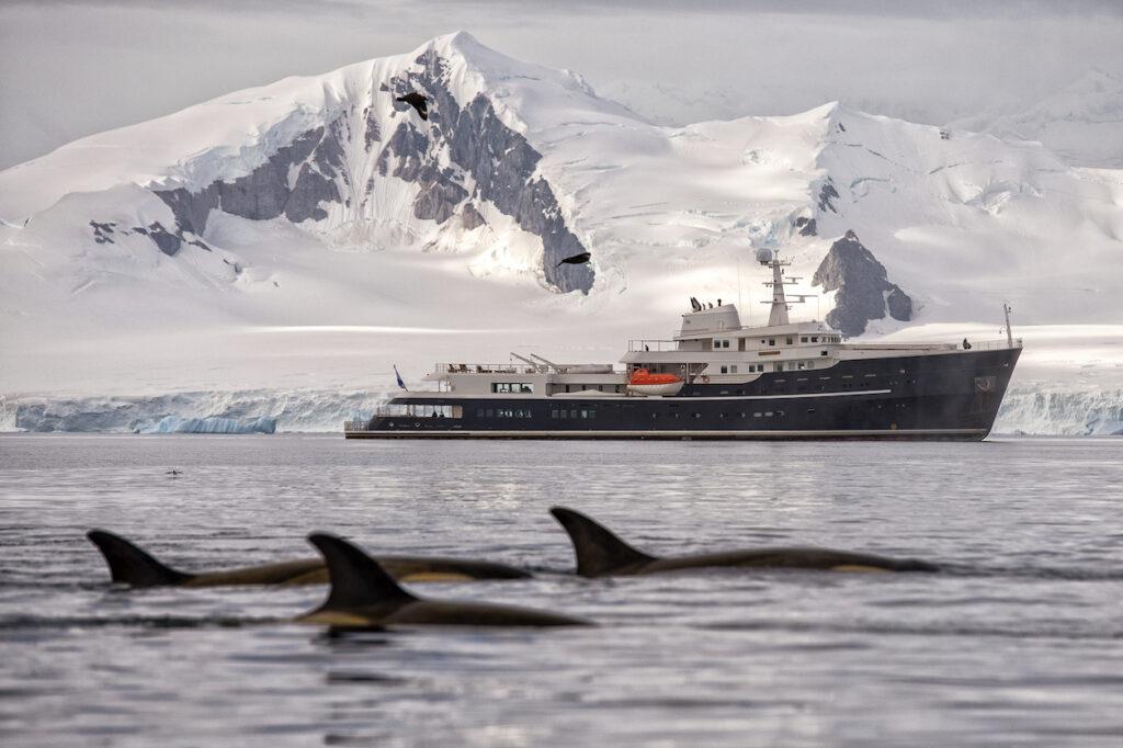 Antarctica, Legend - Whales