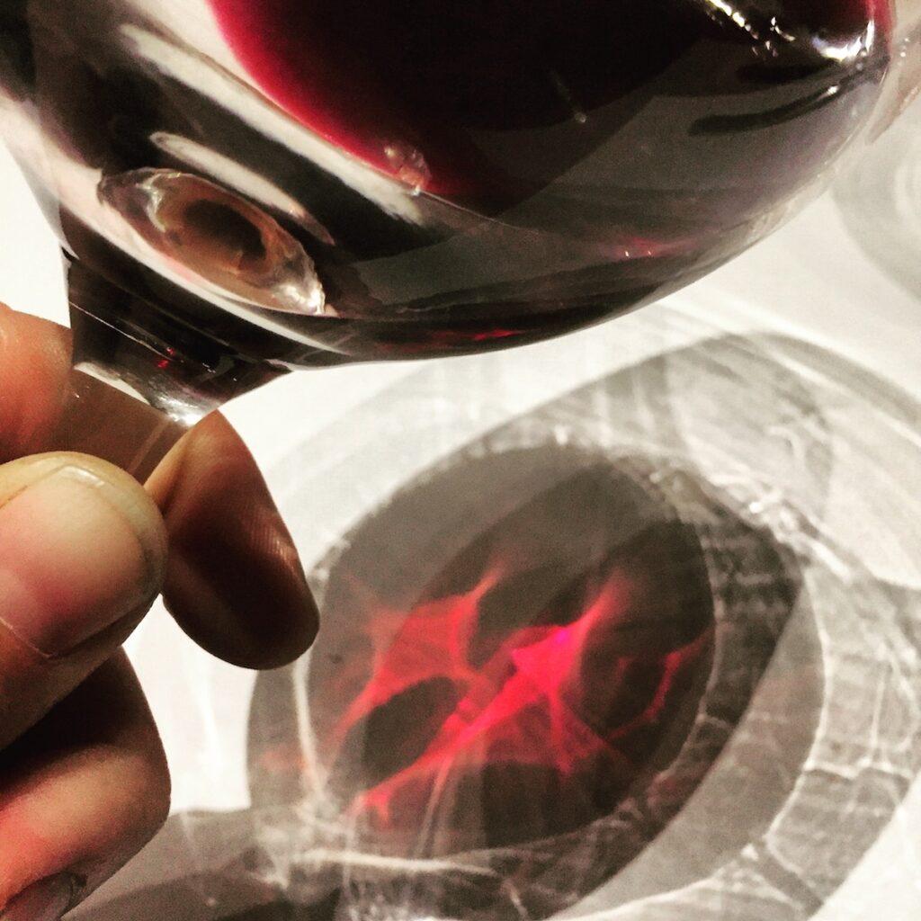 Wine Blending - The Vines, Mendoza