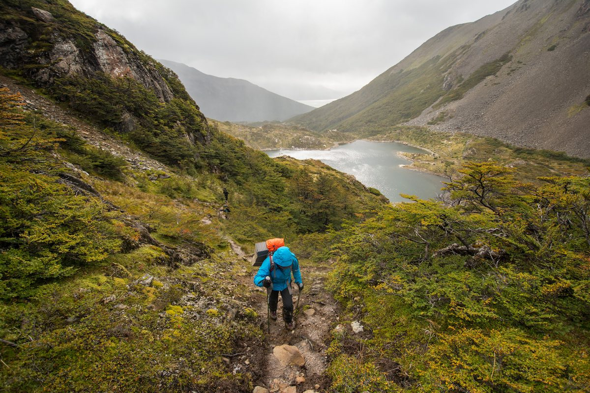 Los Dientes de Navarino, Chile - Forest Trek