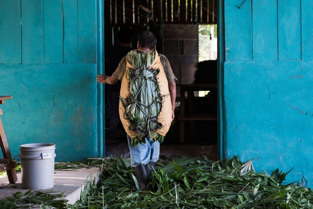 Uaxactun Guatemala - Mayan Village