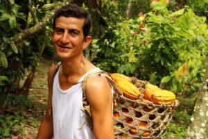 To'ak chocolate Ecuador - cacao fruit basket
