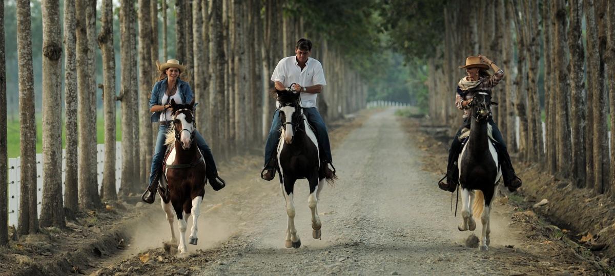 Hacienda La Danesa, Ecuador - Horse Riding
