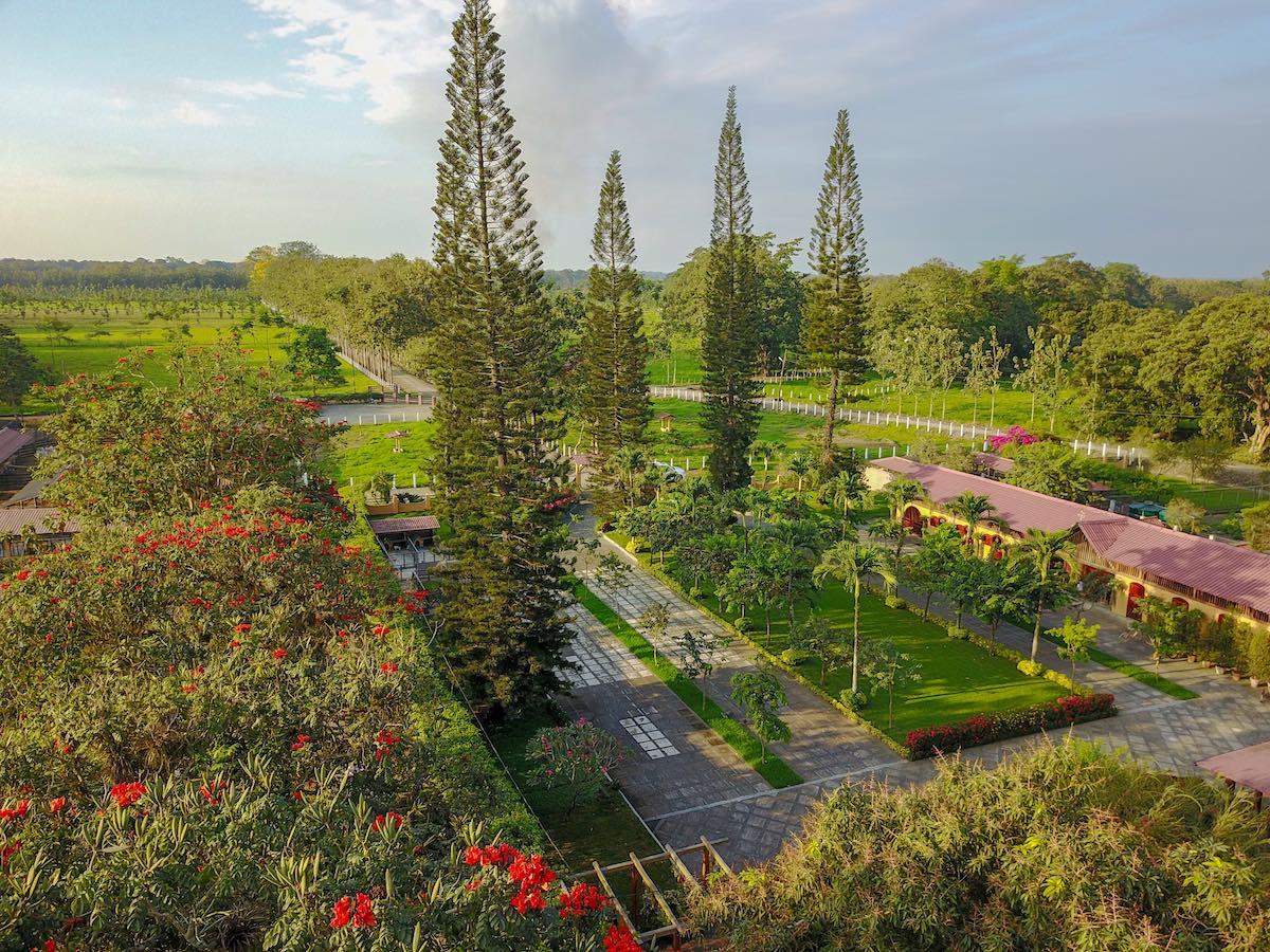 Hacienda La Danesa, Ecuador - Garden Flowers