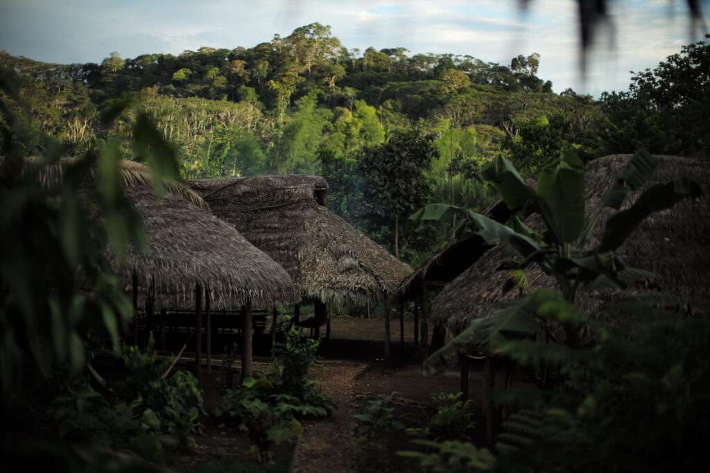 Naku, Ecuadorian Amazon - Thatch Huts