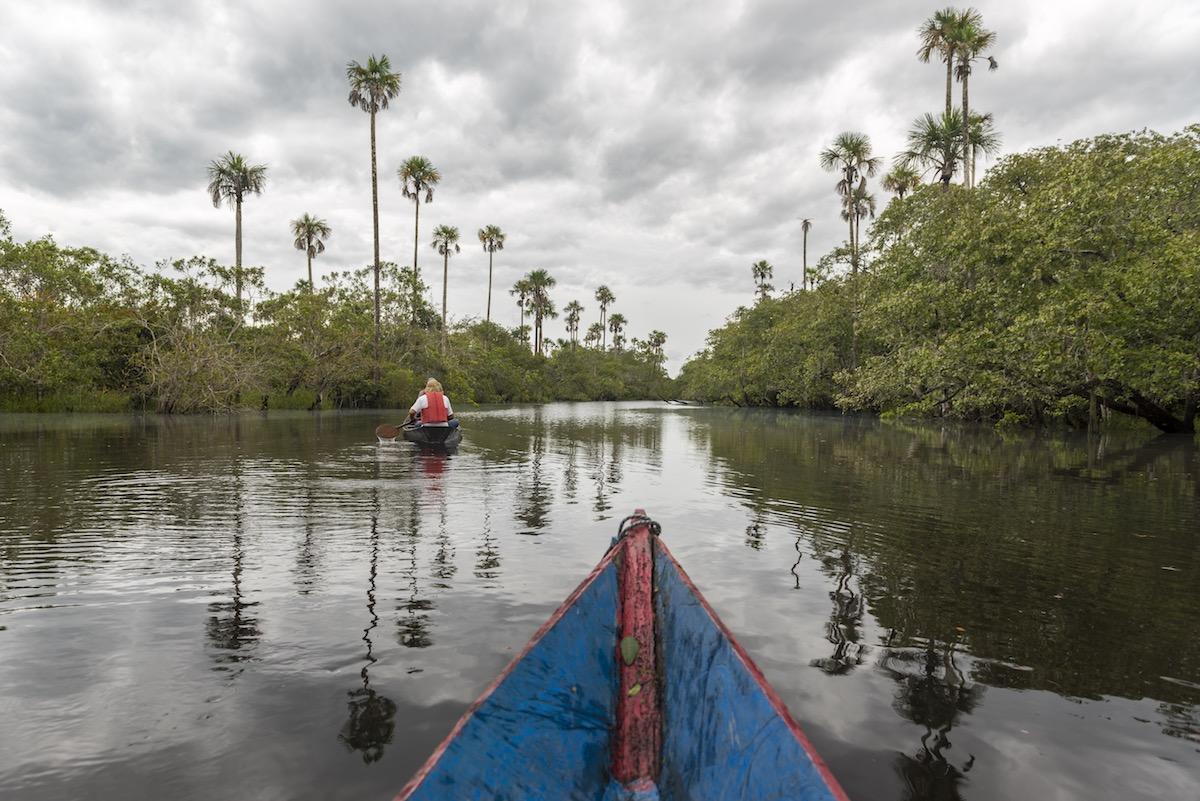Wayabero, Colombia - Black Lagoon Canoeing