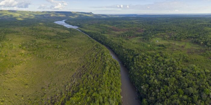 Wayabero, Colombia - Jungle Landscape