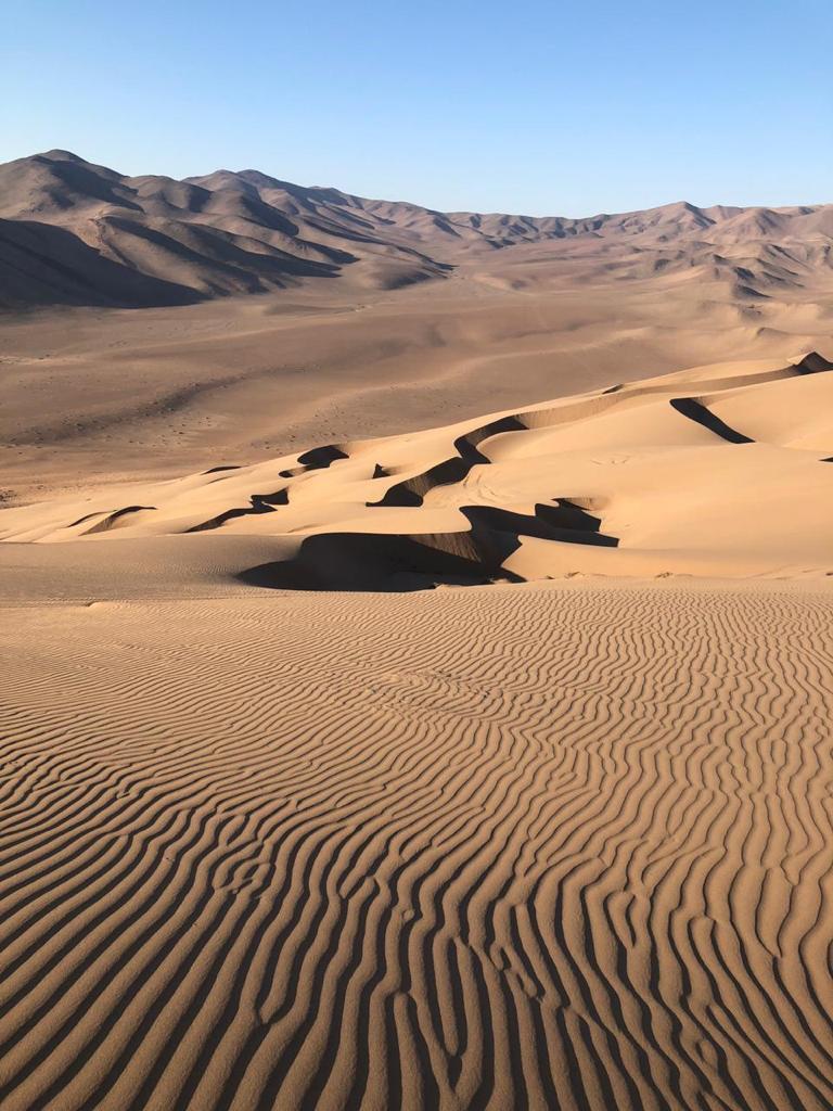 Wara Nomade, Chile - Southern Atacama Desert