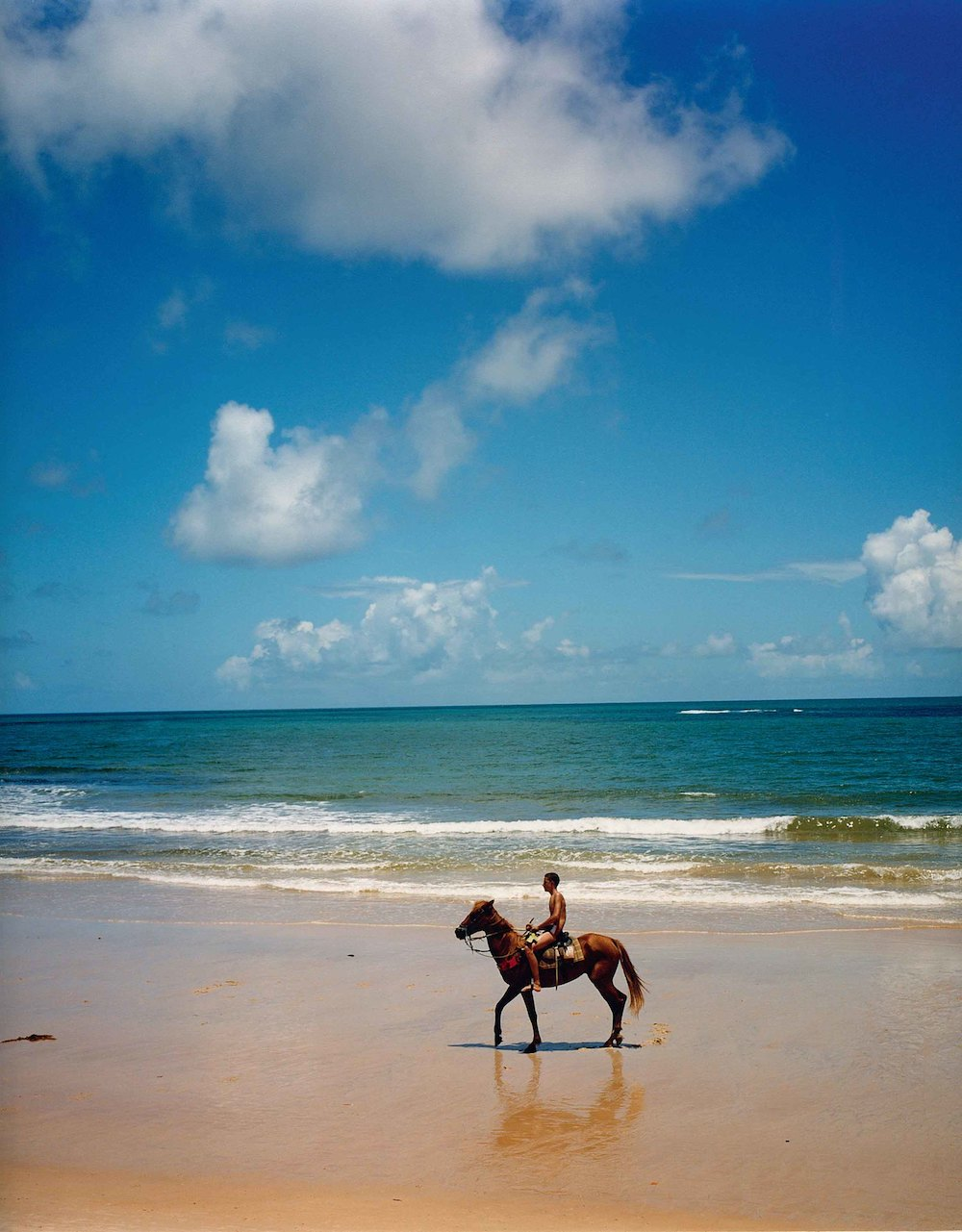 Horse riding Trancoso beach