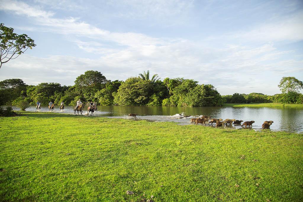 Corocora Camp, Colombia | Plan South America
