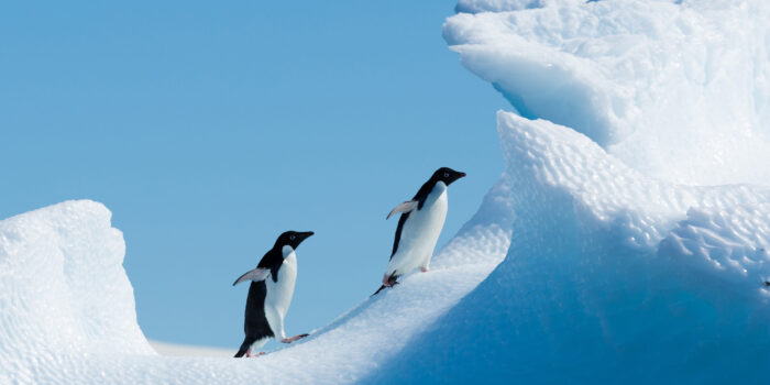 Plan South America | Antarctica expedition