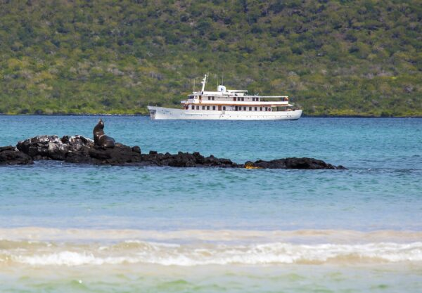 M/Y Grace in the Galapagos – A Wildlife & Photography Expedition