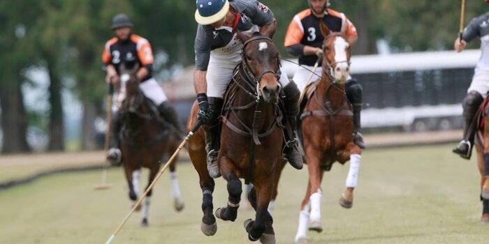 Plan South America | Puesto Viejo polo