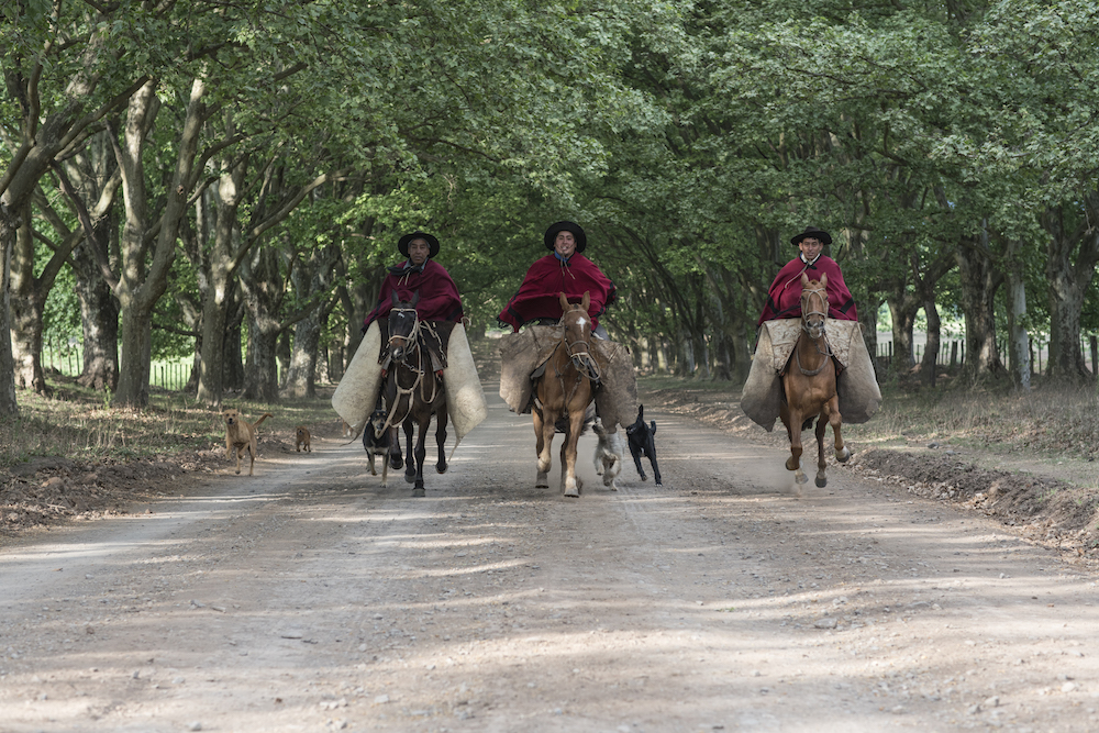 Estancia Pampa Grande | Gauchos, riding