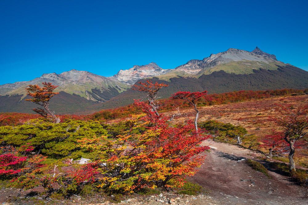 Plan South America | Tierra del Fuego, Argentina