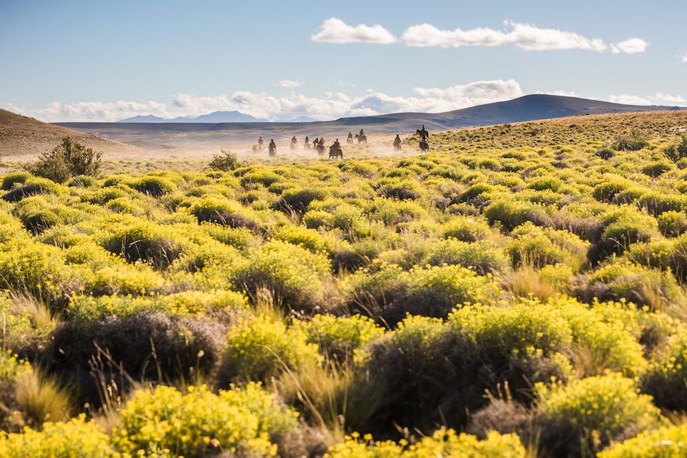 Plan South | Estancia Alinco, Patagonia