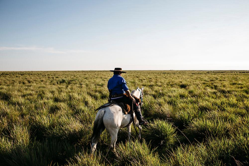 Greg Funnell, gauchos, Argentina